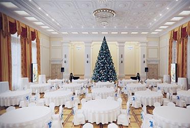 Панорама Губернаторский бал «Рождественские встречи»